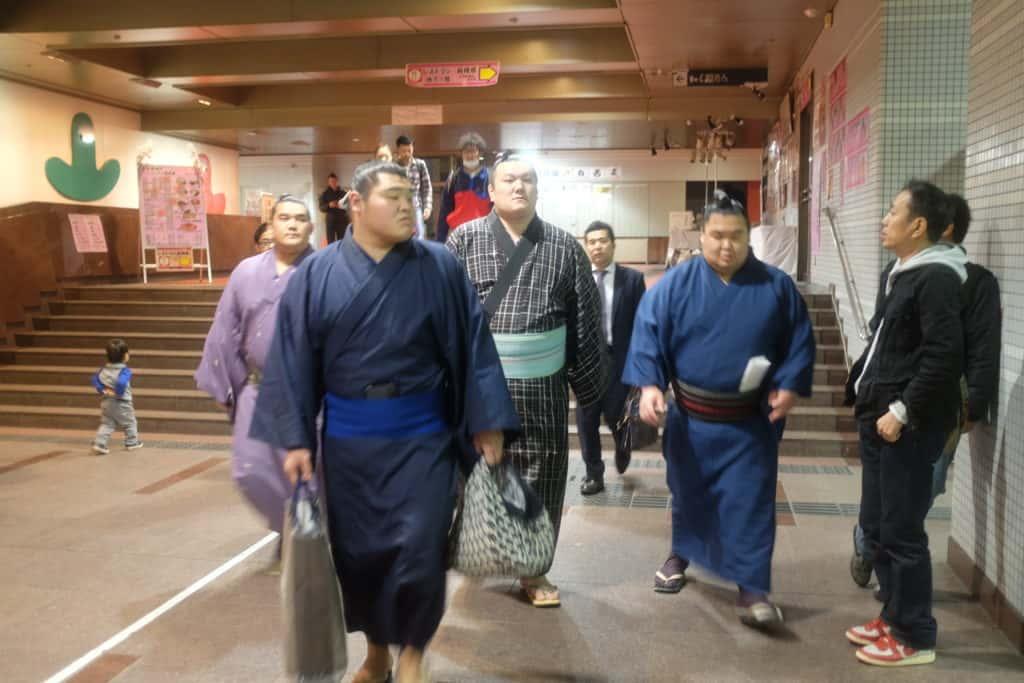 לוחמי סומו ביפן