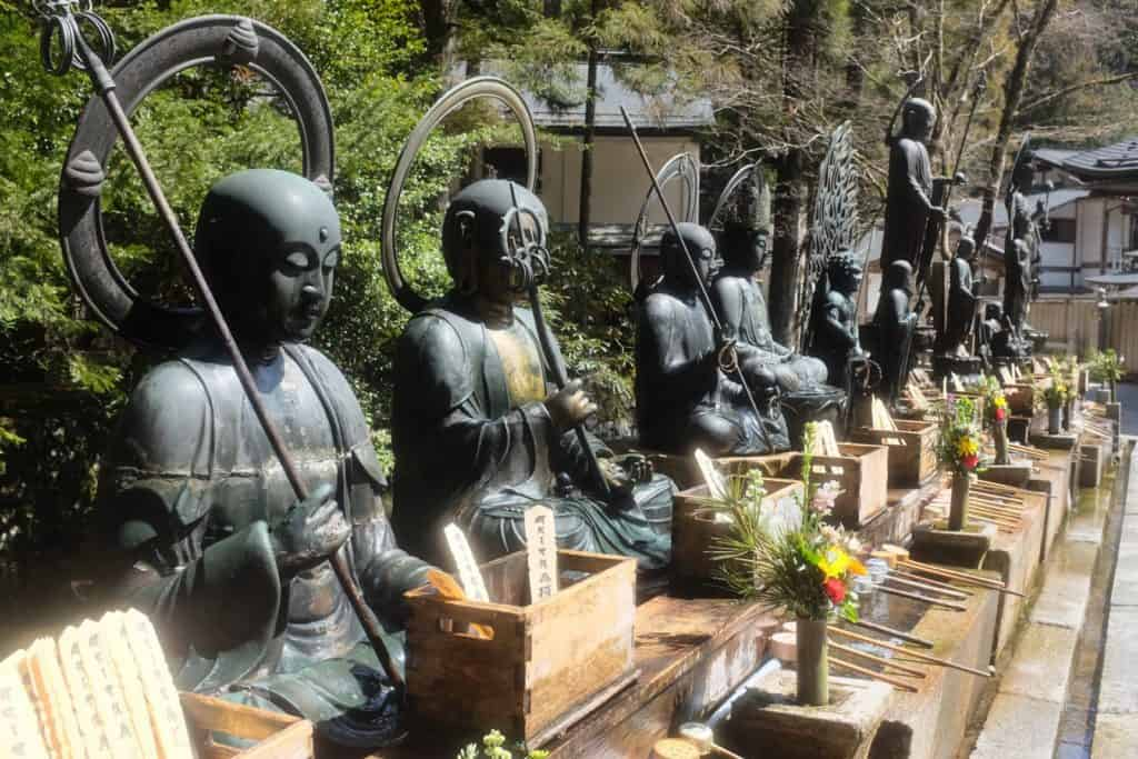 קוייה סאן ביפן