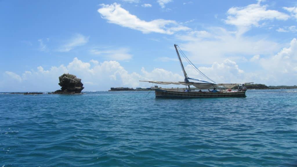סירת דאו באי מאפיה