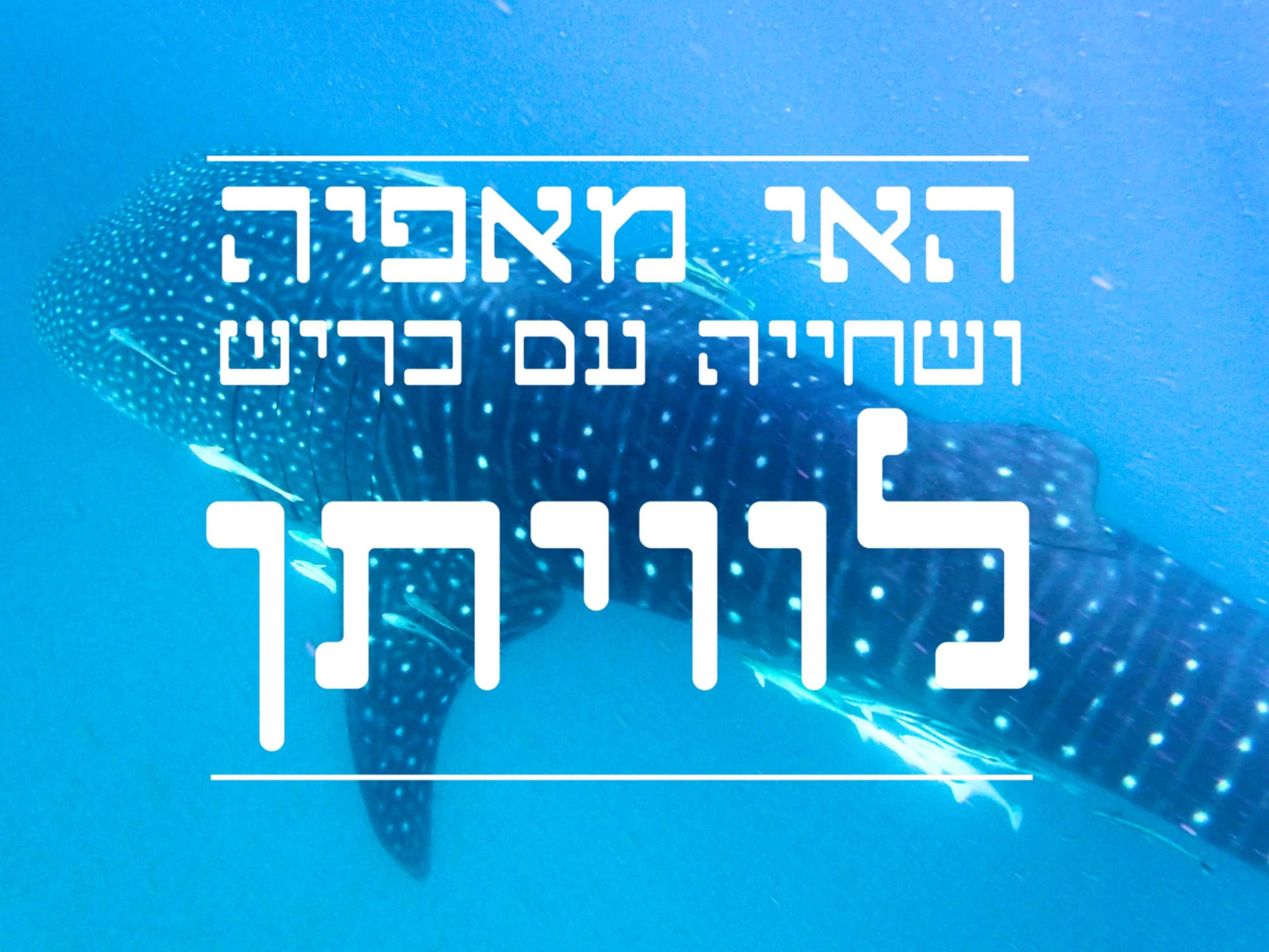 האי מאפיה פנינה שלא התגלתה ושחייה מיוחדת עם כרישי לוויתן