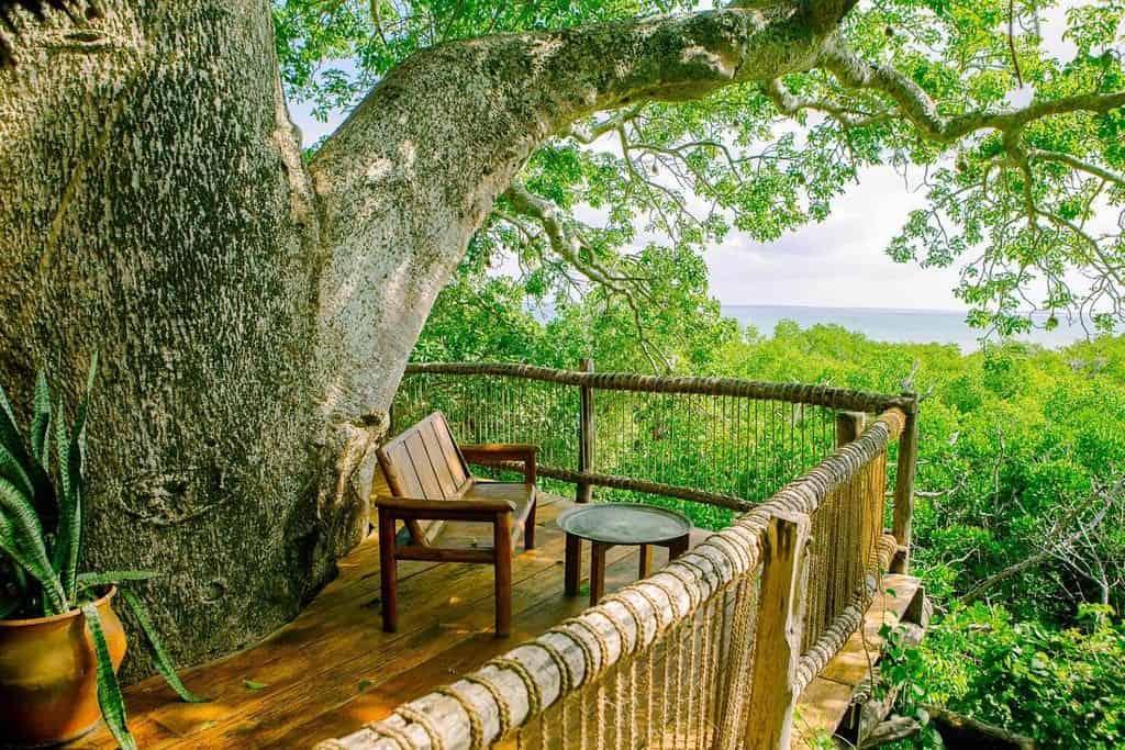 בית עץ על האי מאפיה