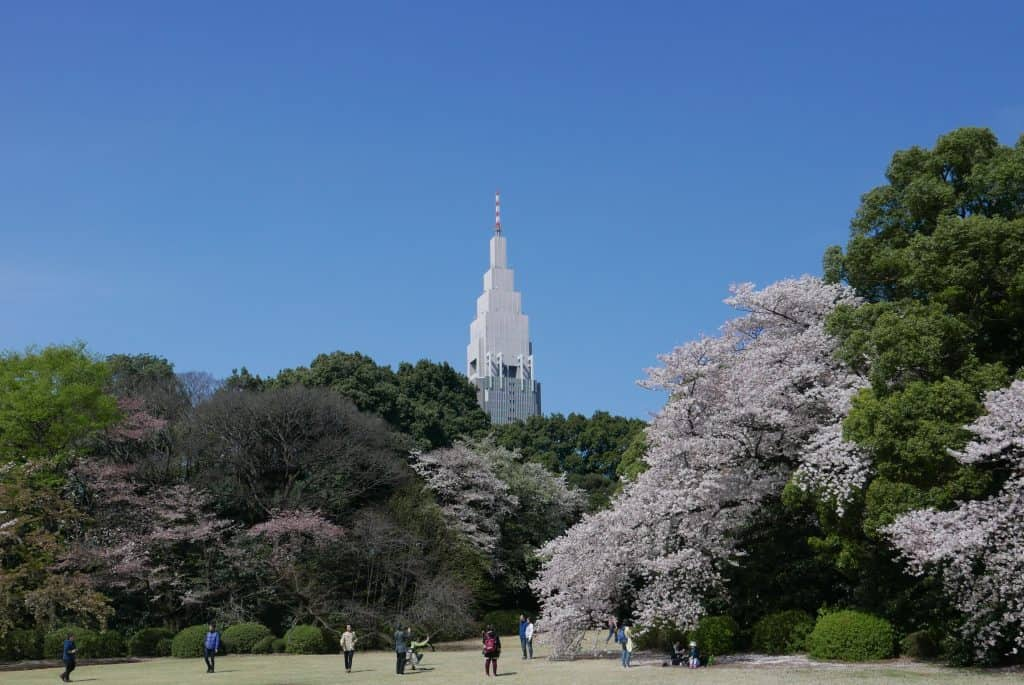 פארק שינג׳וקו בטוקיו