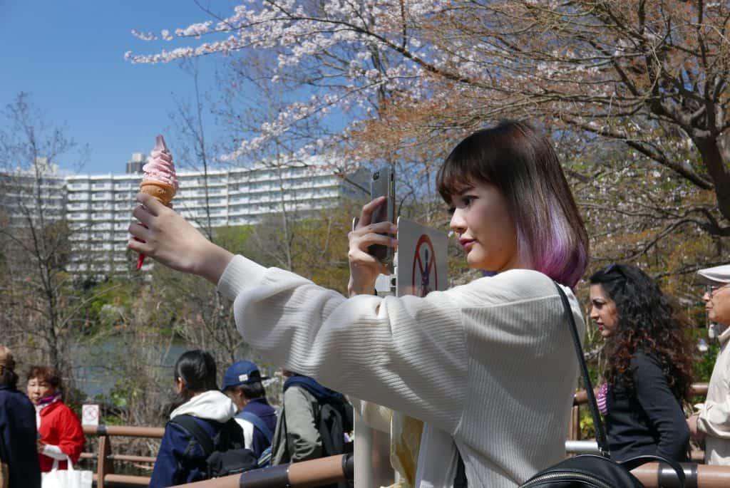 סלפי ביפן עם גלידה - פריחת הדובדבן