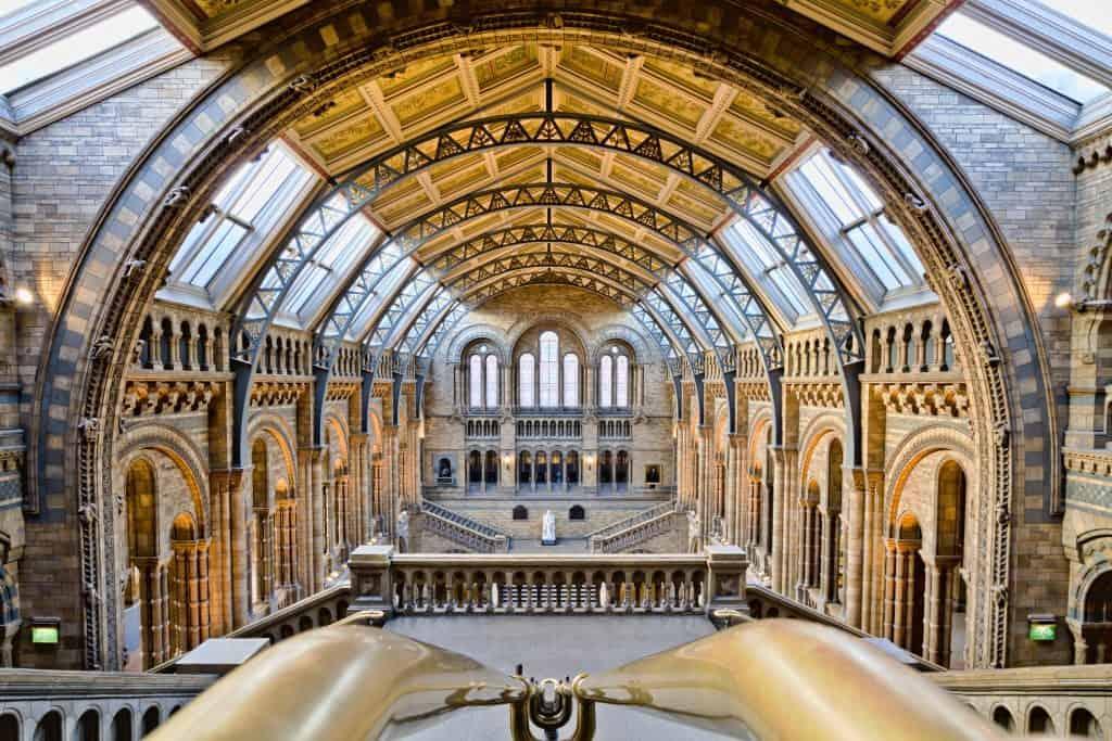 מה לעשות בלונדון בחינם - מוזיאון הטבע בלונדון