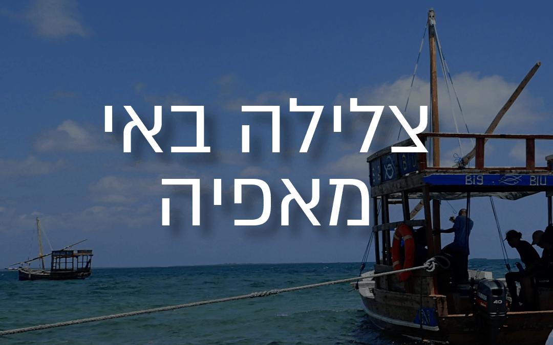 צלילה באי מאפיה: מדריך מלא לצולל באי!