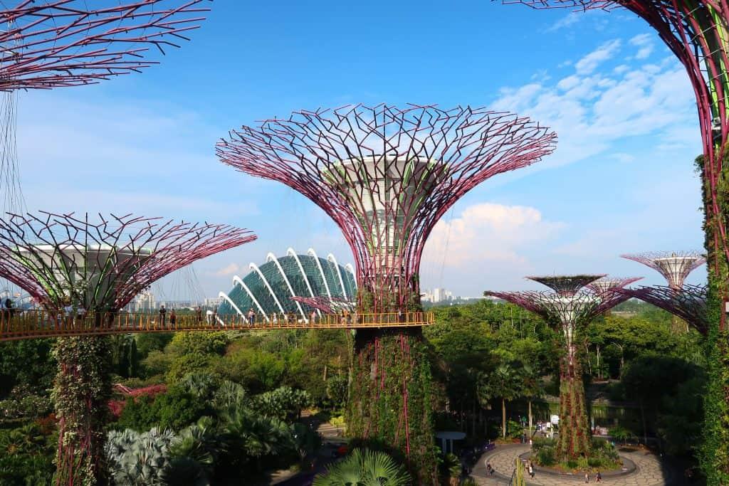עצי ענק בעיר סינגפור